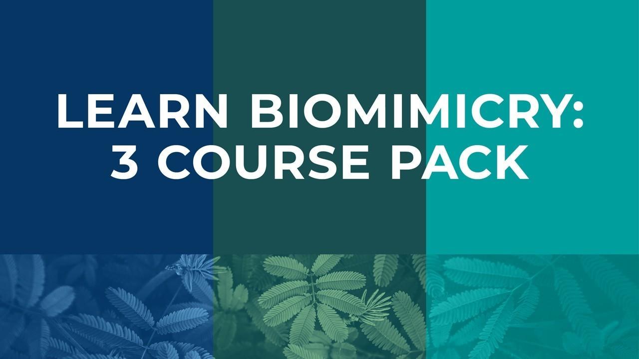 biomimicry-intro-label